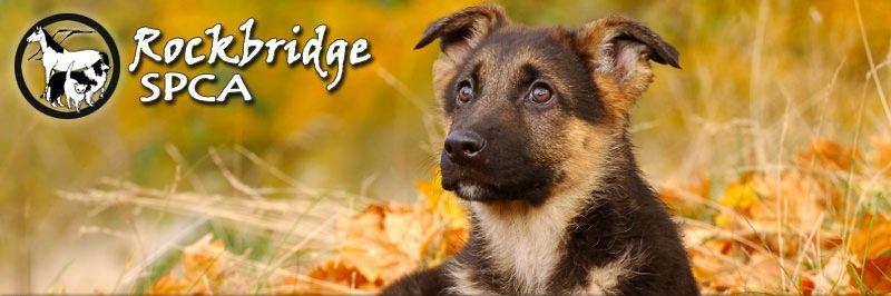 Rockbridge SPCA