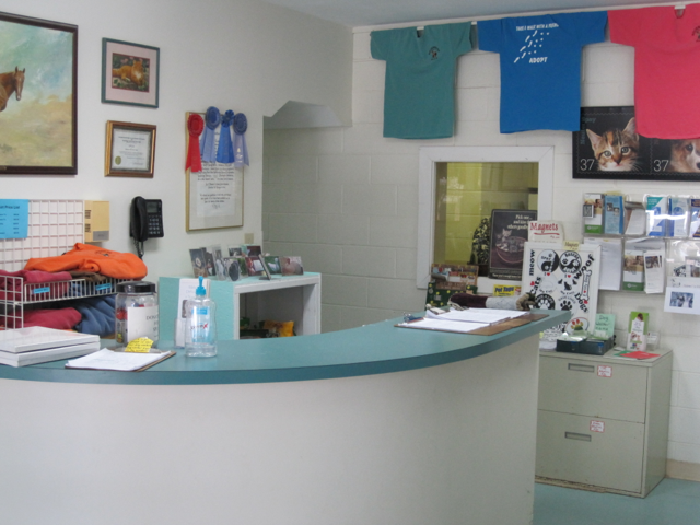 The entry to the SPCA.  Adoption applications are on the desk.