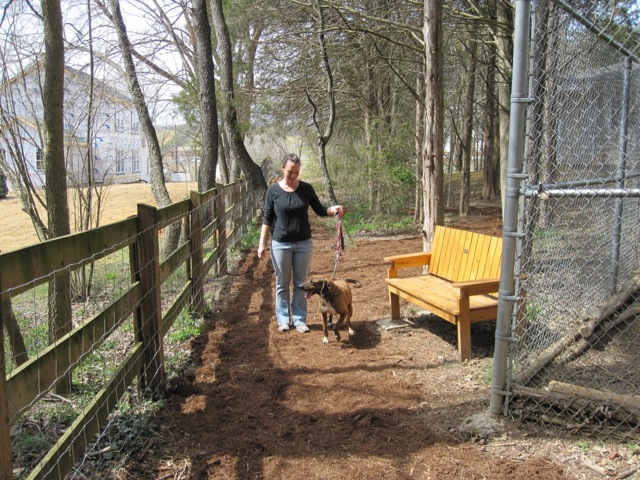 The dogs enjoy going on walks on the dog trail with the dedicated volunteer dog walkers.